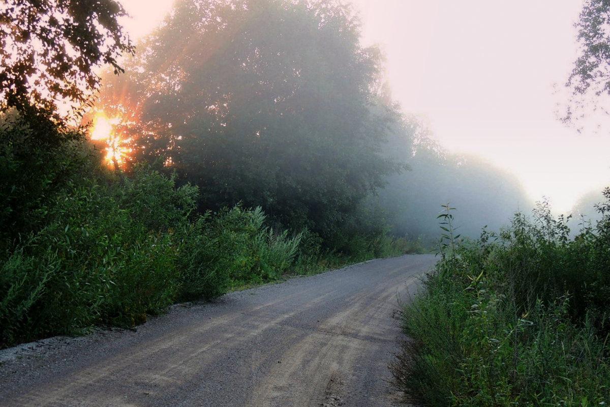 Утро.Туман - Павлова Татьяна Павлова