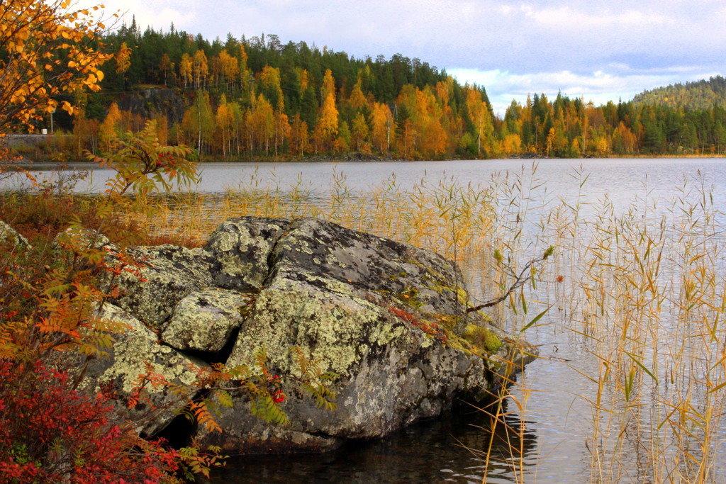 На озере осень. - Галина Полина