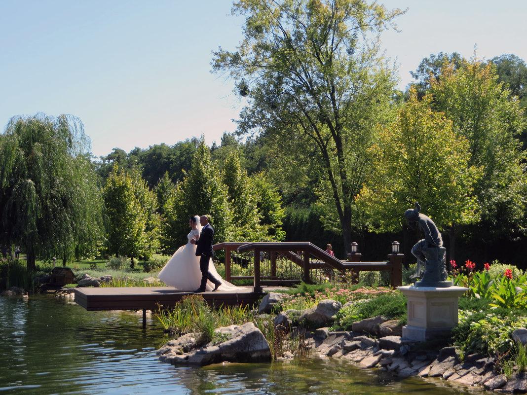 Ах,эта свадьба - Наталья Джикидзе (Берёзина)
