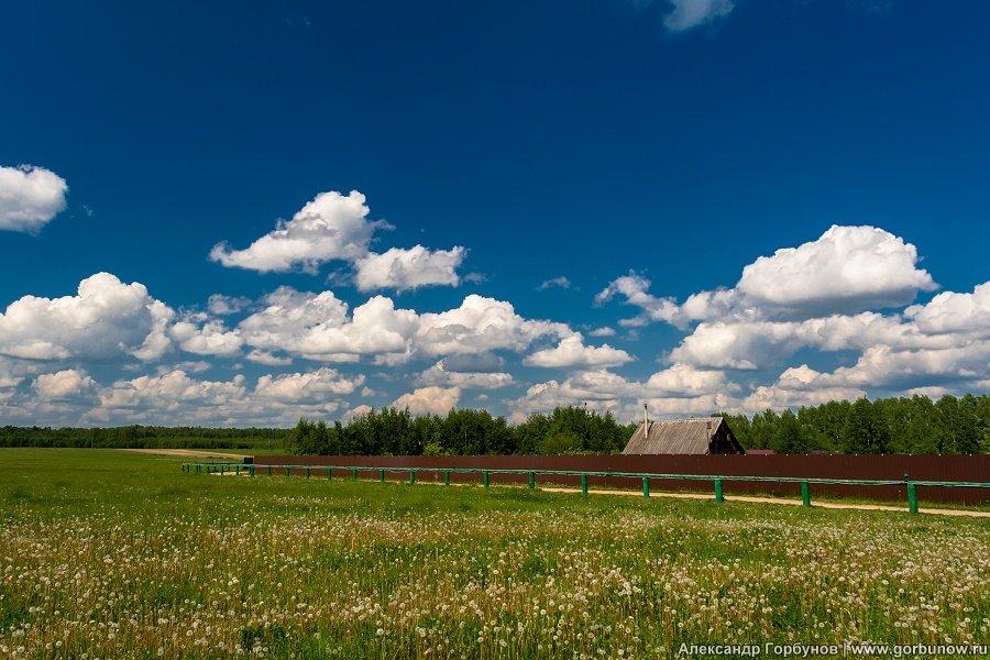 Сельский пейзаж - Александр Горбунов