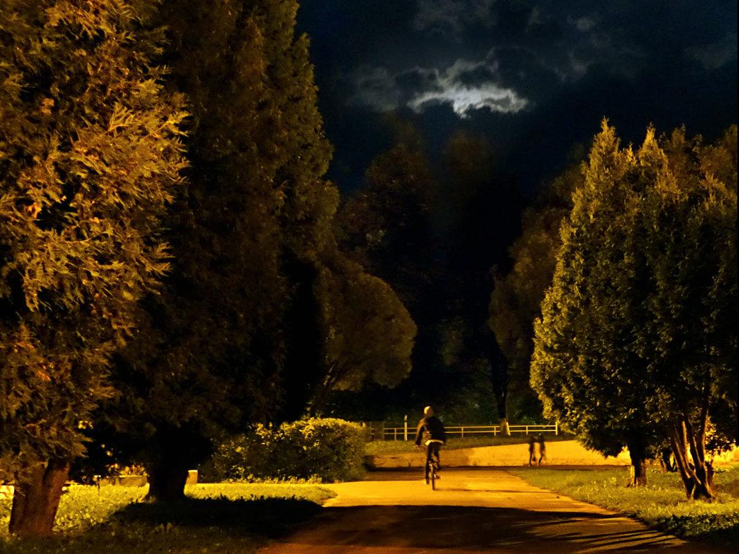 ночной велосипедист - korgen