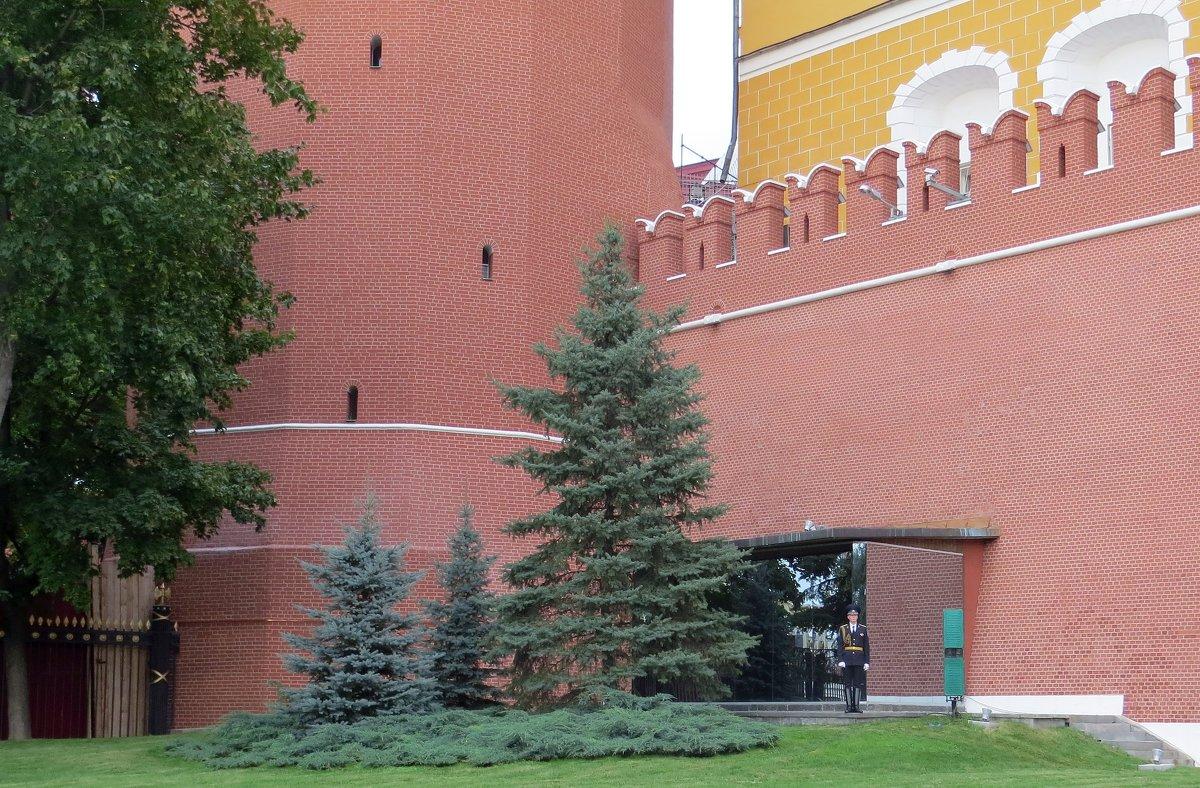 У Кремлёвской стены - Вера Щукина