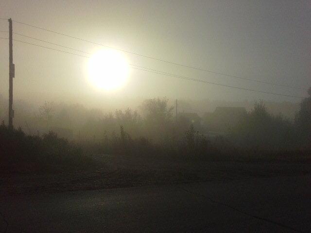Туман 1 - Роман Геннадьевич