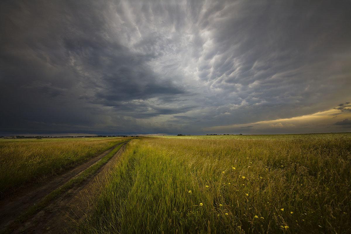 У дороги полевой - Сергей Жуков