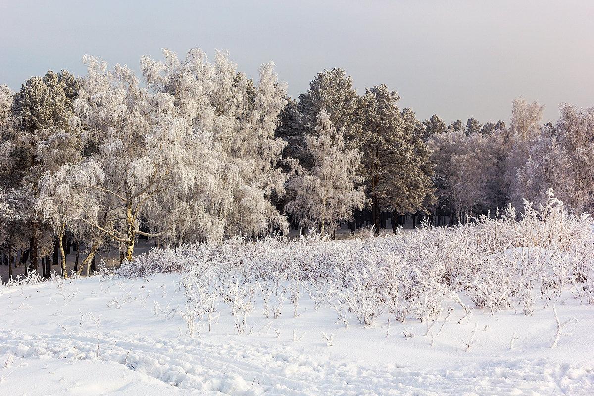 Зимний этюд - Анатолий Иргл