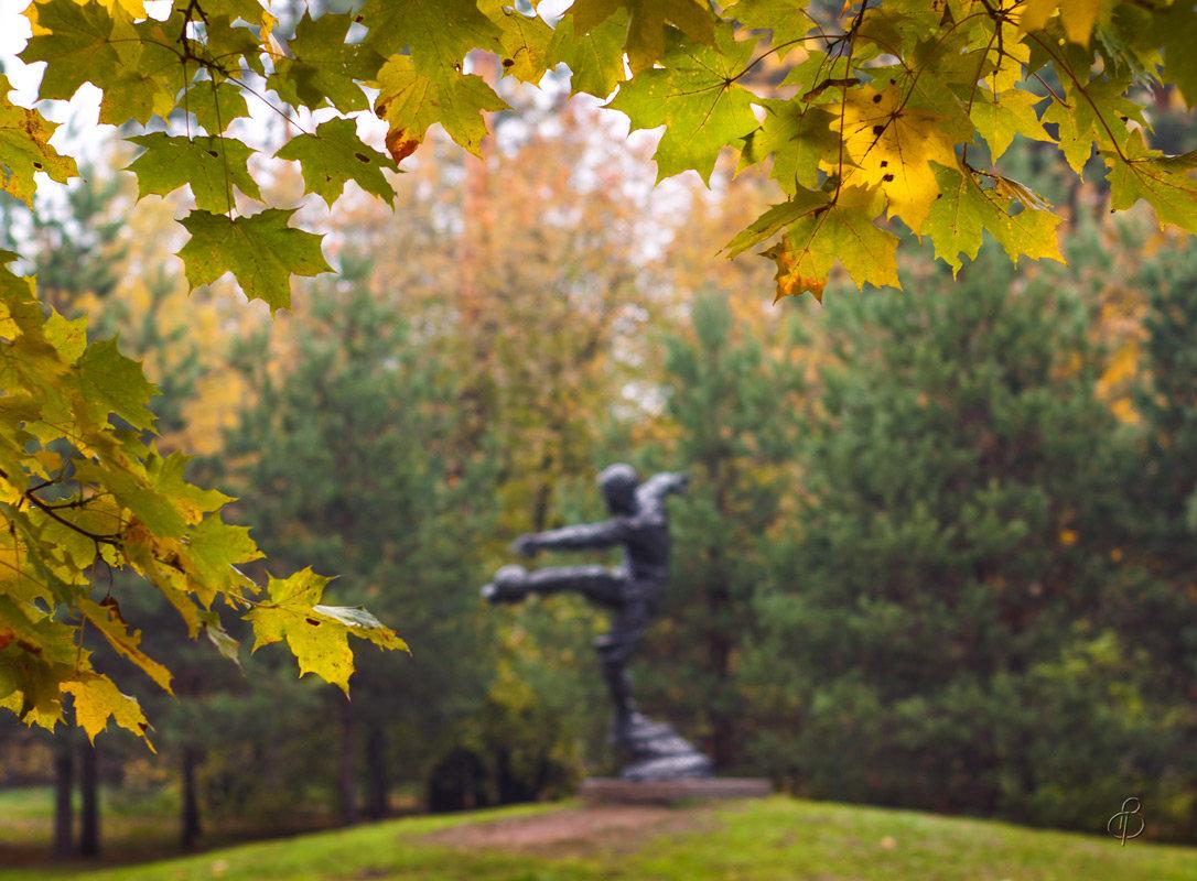 Осень в сквере им. В. Боброва - Виталий
