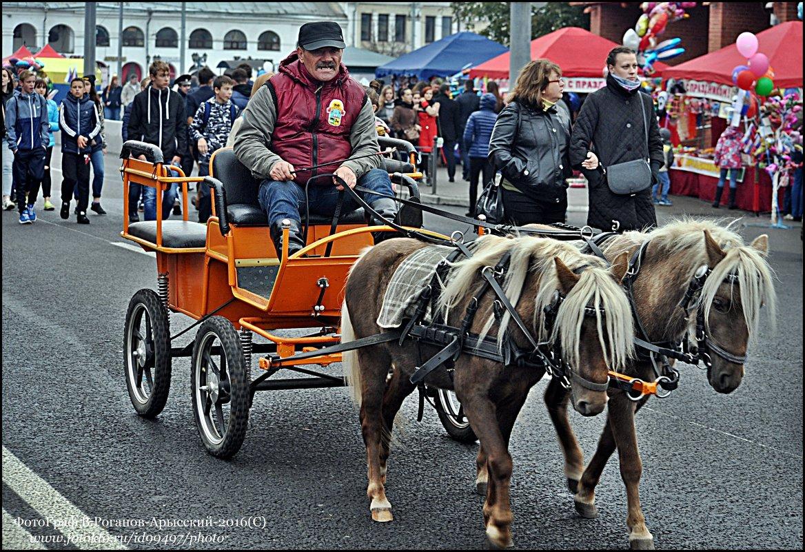 1026-ой ДЕНЬ ГОРОДА  ВЛАДИМИРА - Валерий Викторович РОГАНОВ-АРЫССКИЙ