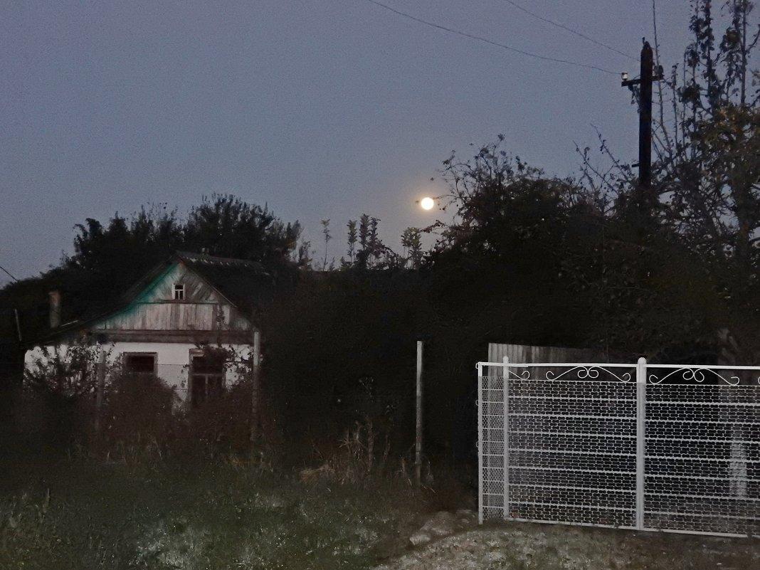 Лунная ночь - Владимир