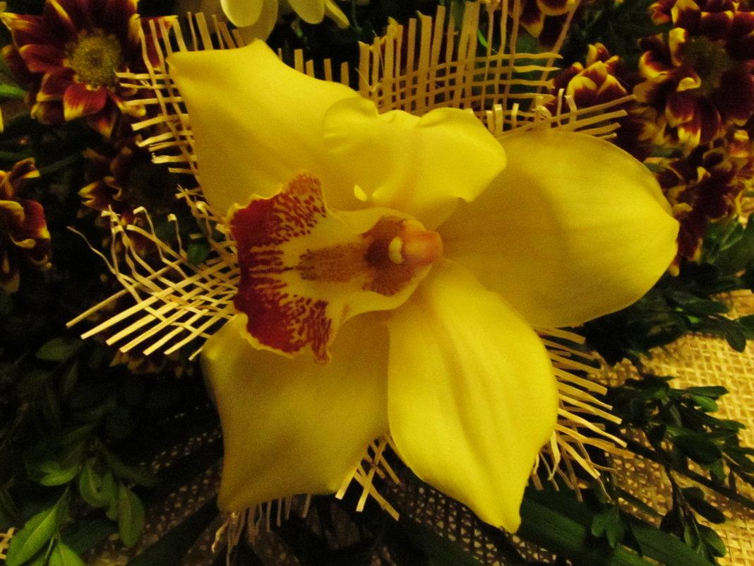 Красивый цветок - татьяна