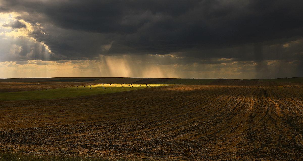 В полях, под зноем и дождём - Сергей Жуков