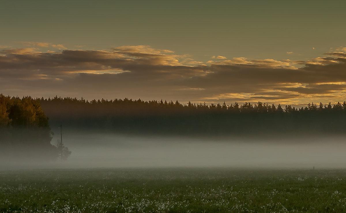 Утренний туман - Николай Климович