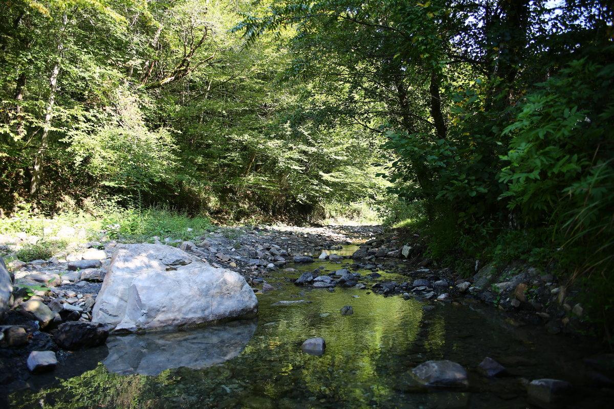 Горная река Псахе - valeriy khlopunov