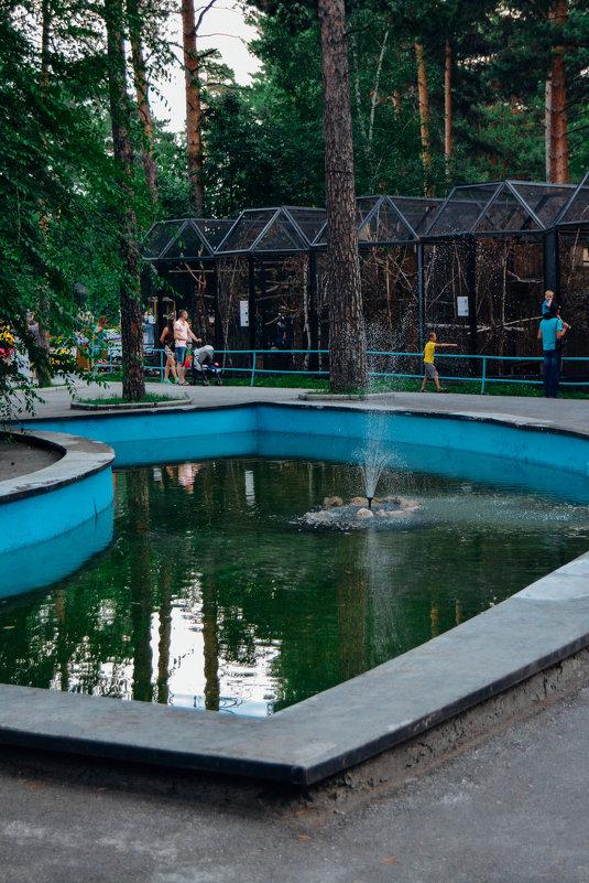 Фонтан в зоопарке - Света Кондрашова