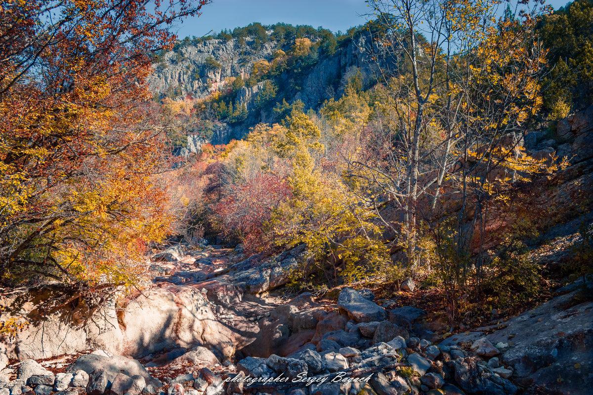 осень в Крыму - Sergey Bagach