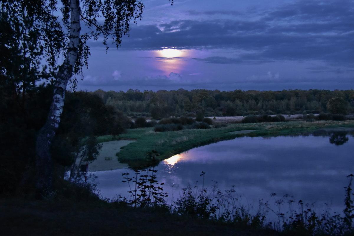 Луна...луна...! - Валера39 Василевский.