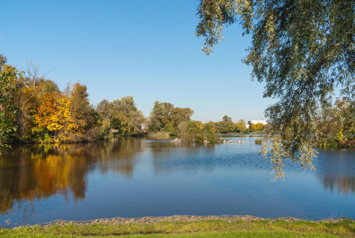 Осень на Разливе 7 - Виталий