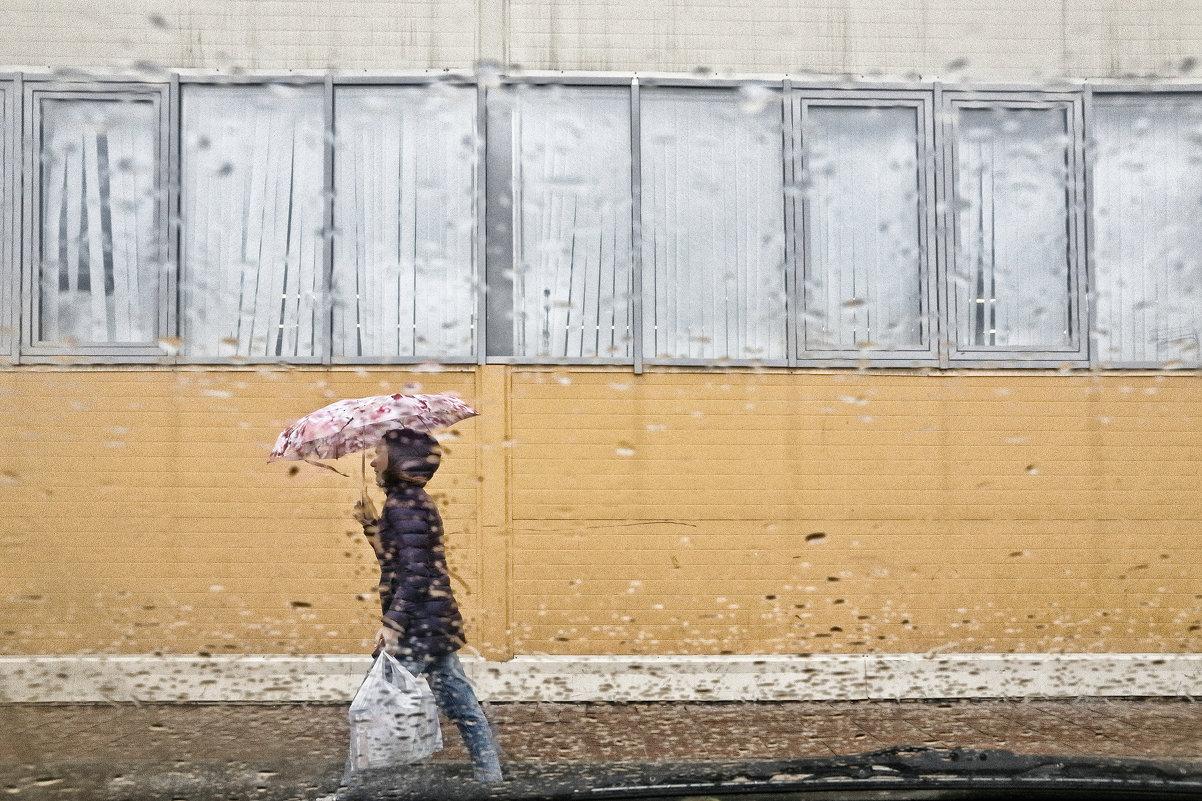Дождь - Сергей Елесин