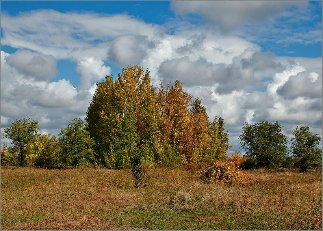 Осень - Александр Смольников