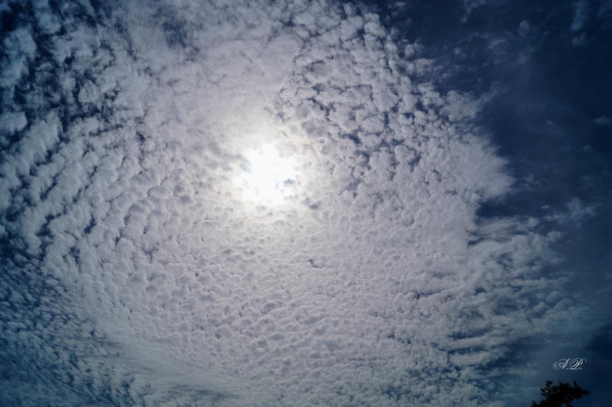 Небо.. - Анжелина Пилихосова