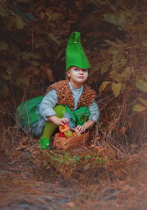 Гномы сказочного леса. Маленькая Жадина)))) - Ольга Егорова