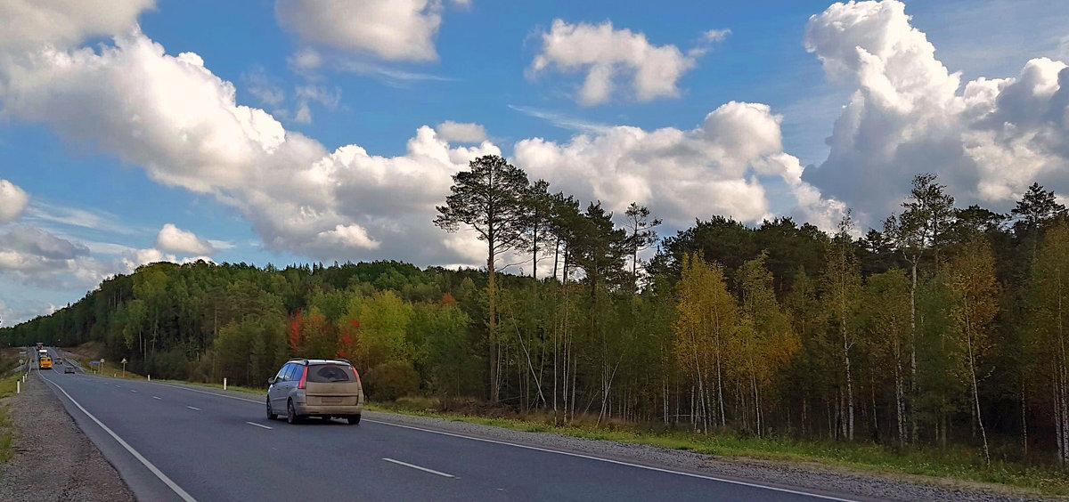 дорога на север... - Олег Петрушов