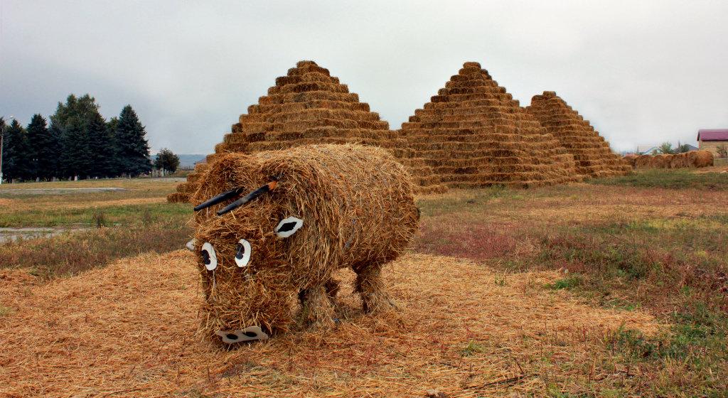 Наш бык и в Египте !!! Чудесааааа!)))) - Клара