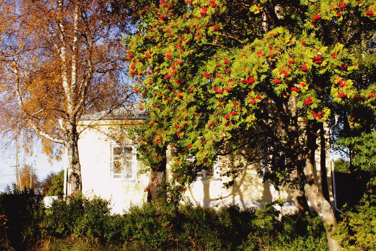 осень в городе - Сергей Кочнев