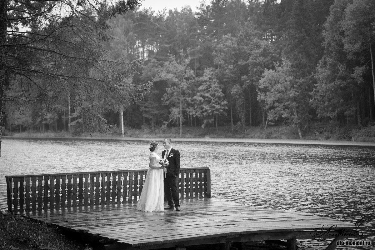 Свадьба - Алена (Творческий псевдоним А-ля Moment)