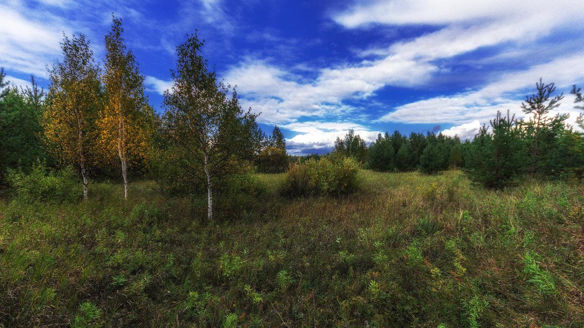 осень - Андрей Афонасьев