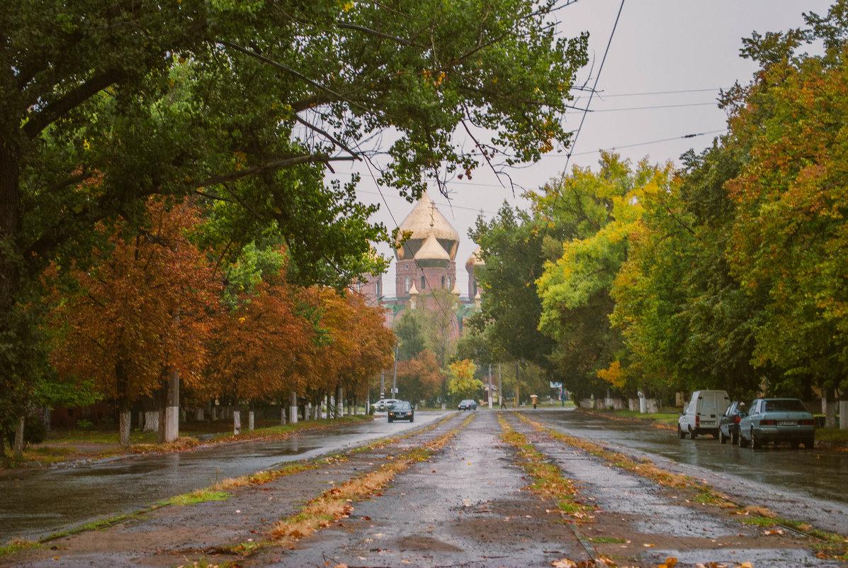 осенний дождь - Алина Гриб
