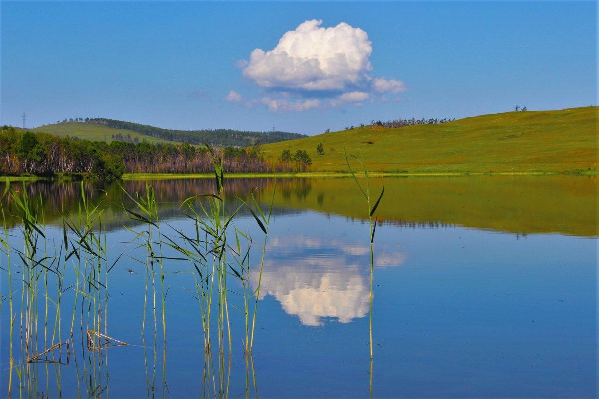 Облачко над озером - Сергей Чиняев