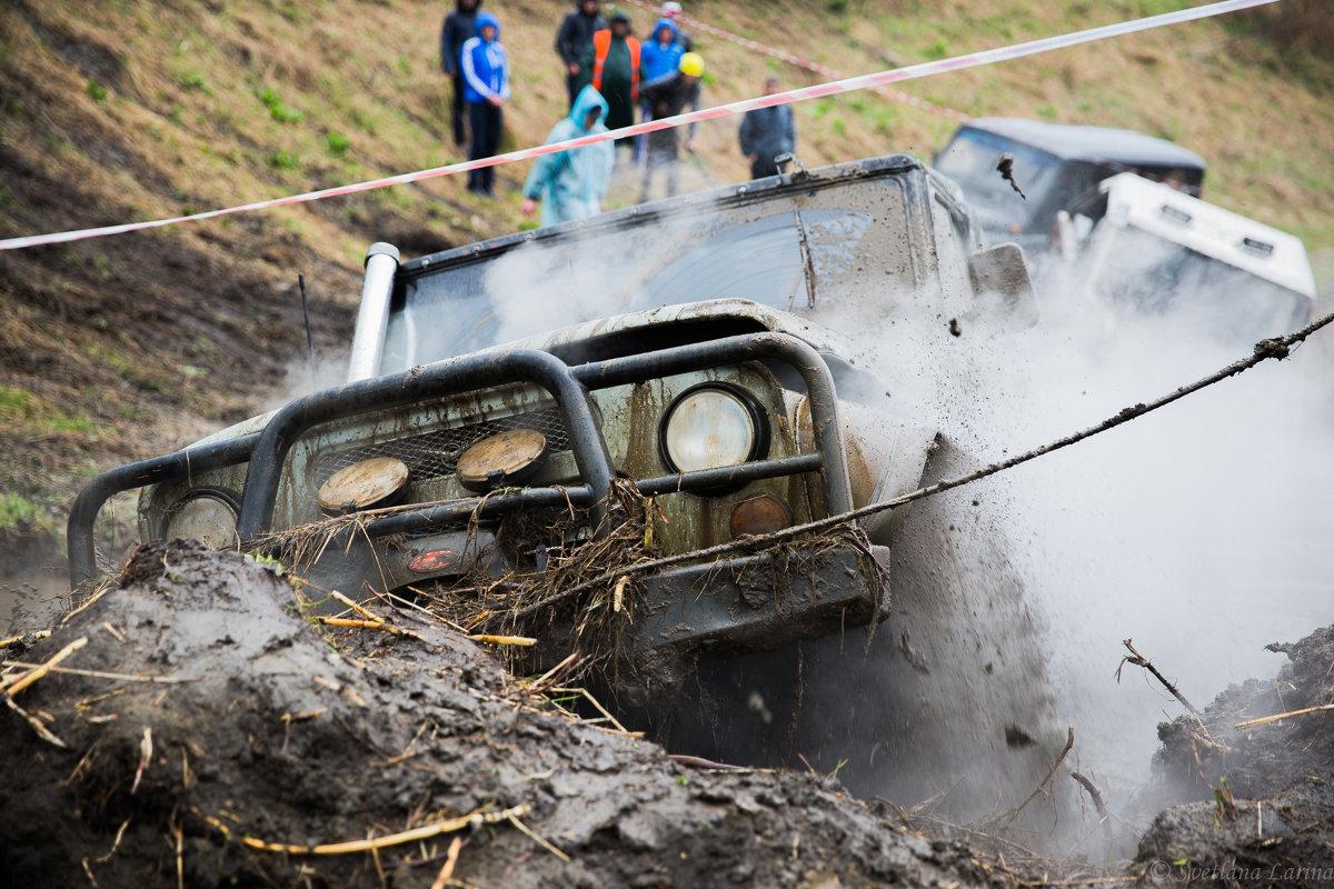 Грязь... грязь...грязь... - Svetlana Larina