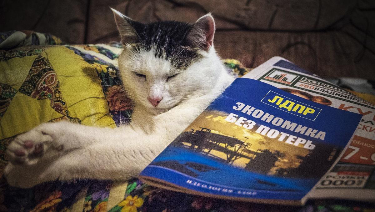 Размышления перед выборами... - Александр Ковальчук