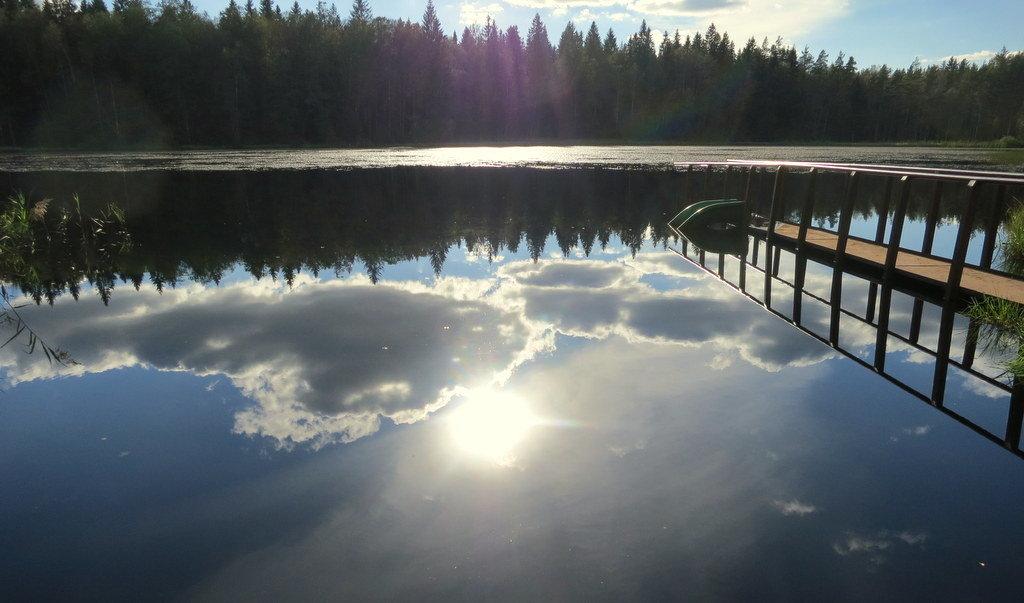 Лесное озеро. - Валентина Жукова