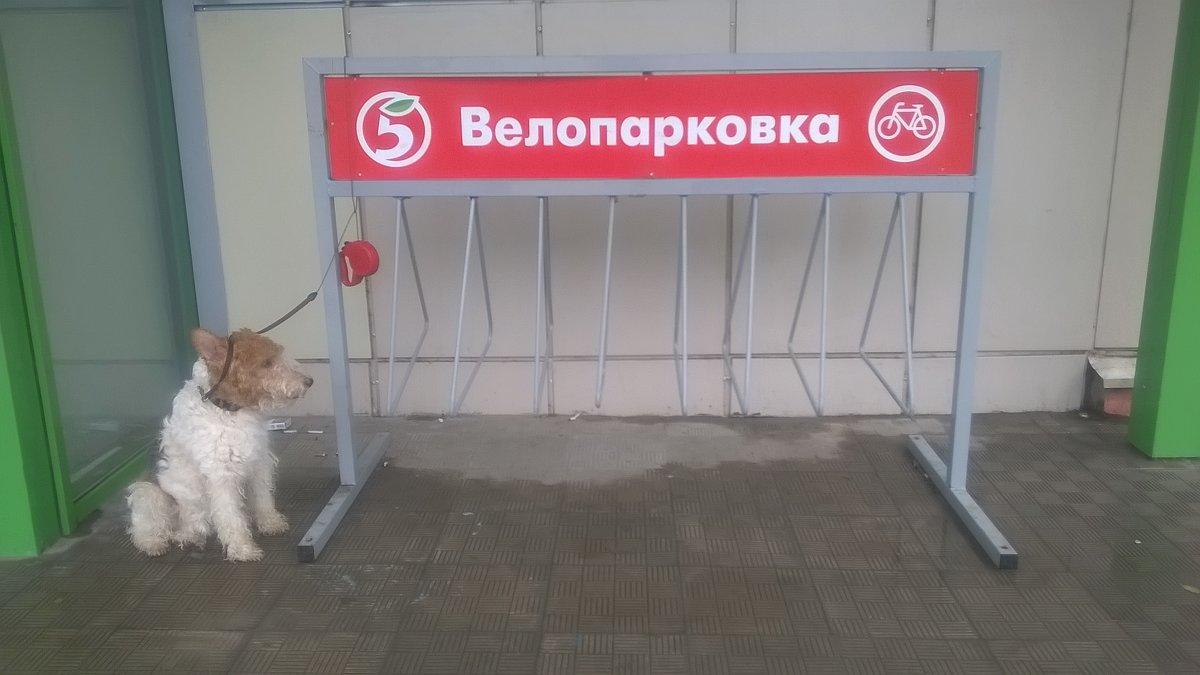 свято место пусто не бывает - Василий Либко