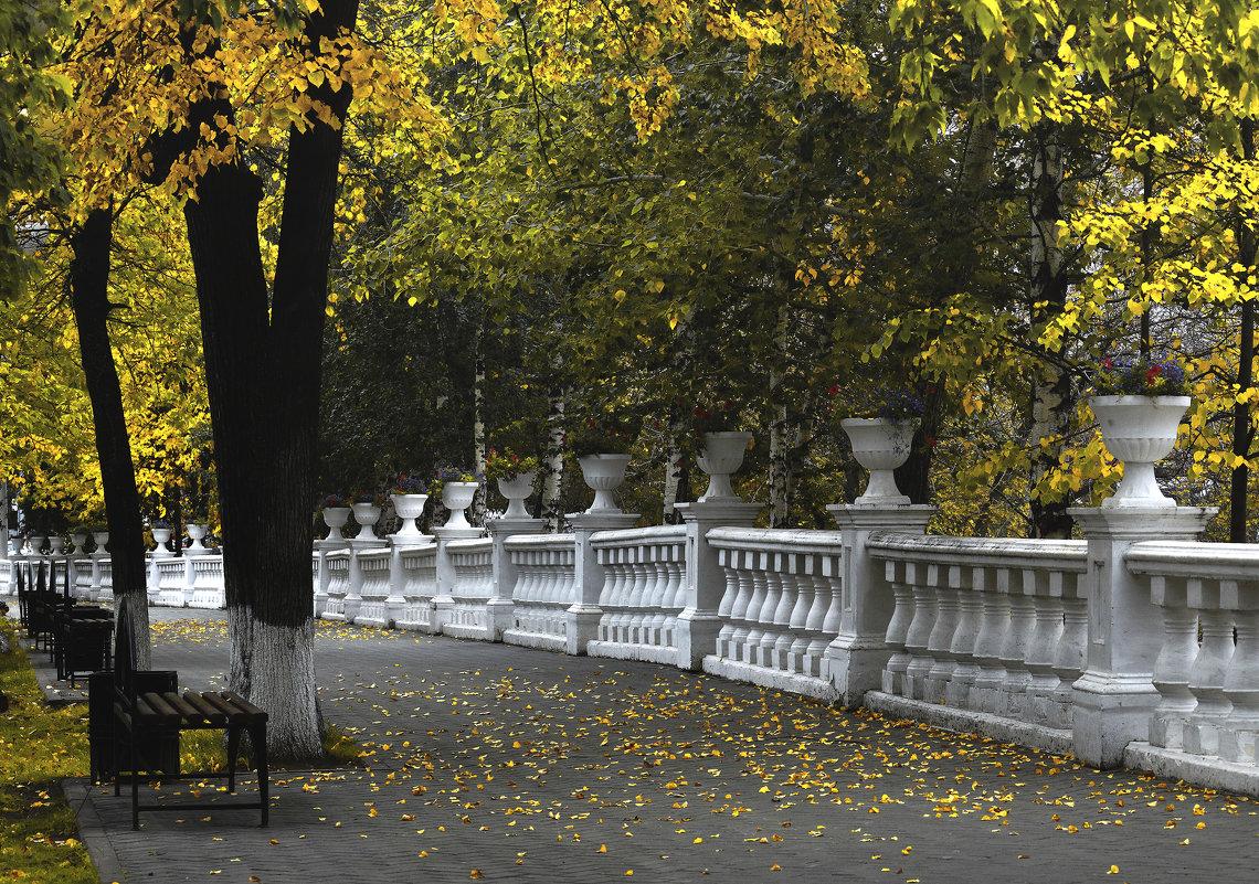 В осеннем парке - Сергей Елесин