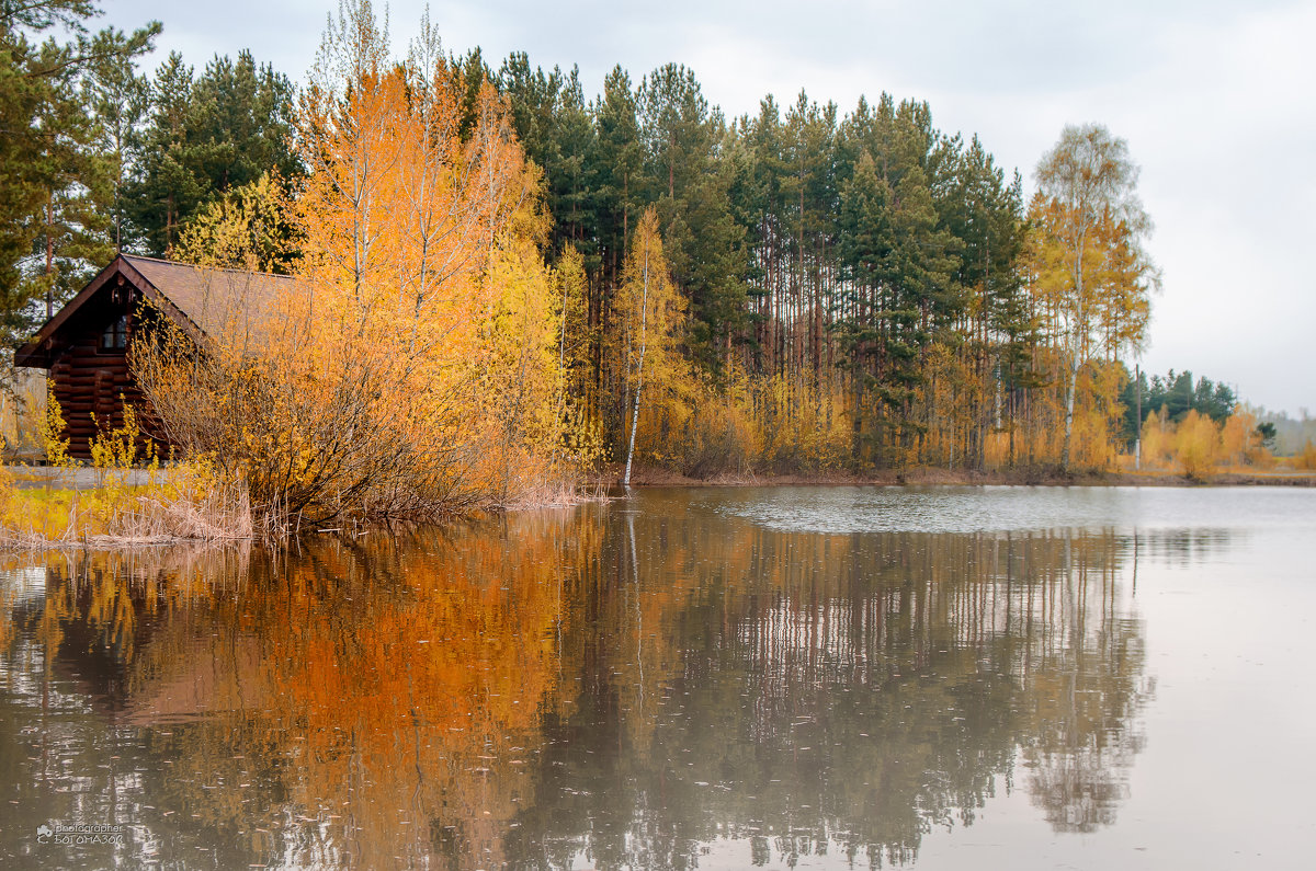 На озере... - Кирилл Богомазов