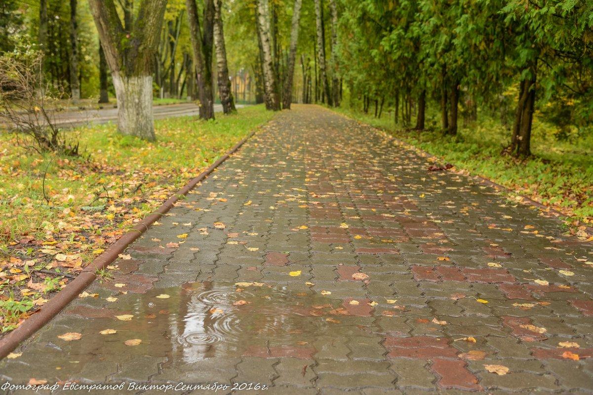 Осенний город. - Виктор Евстратов