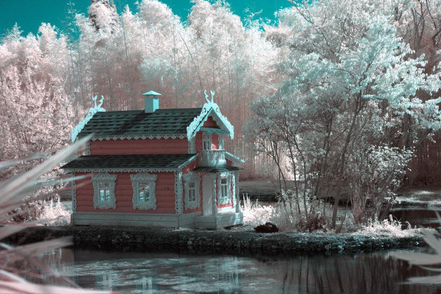Лебединый домик - Alexander Varykhanov