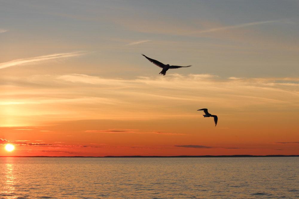 Закат над Онегой - Надежда Щупленкова