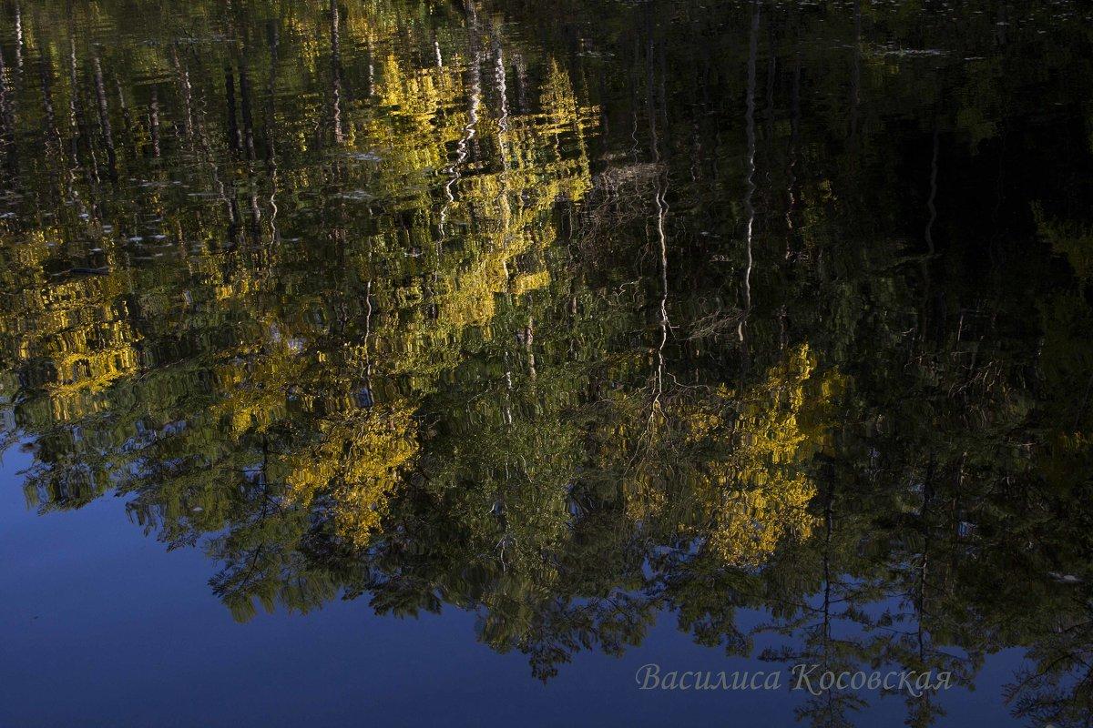 отражение на Сухом озере - василиса косовская