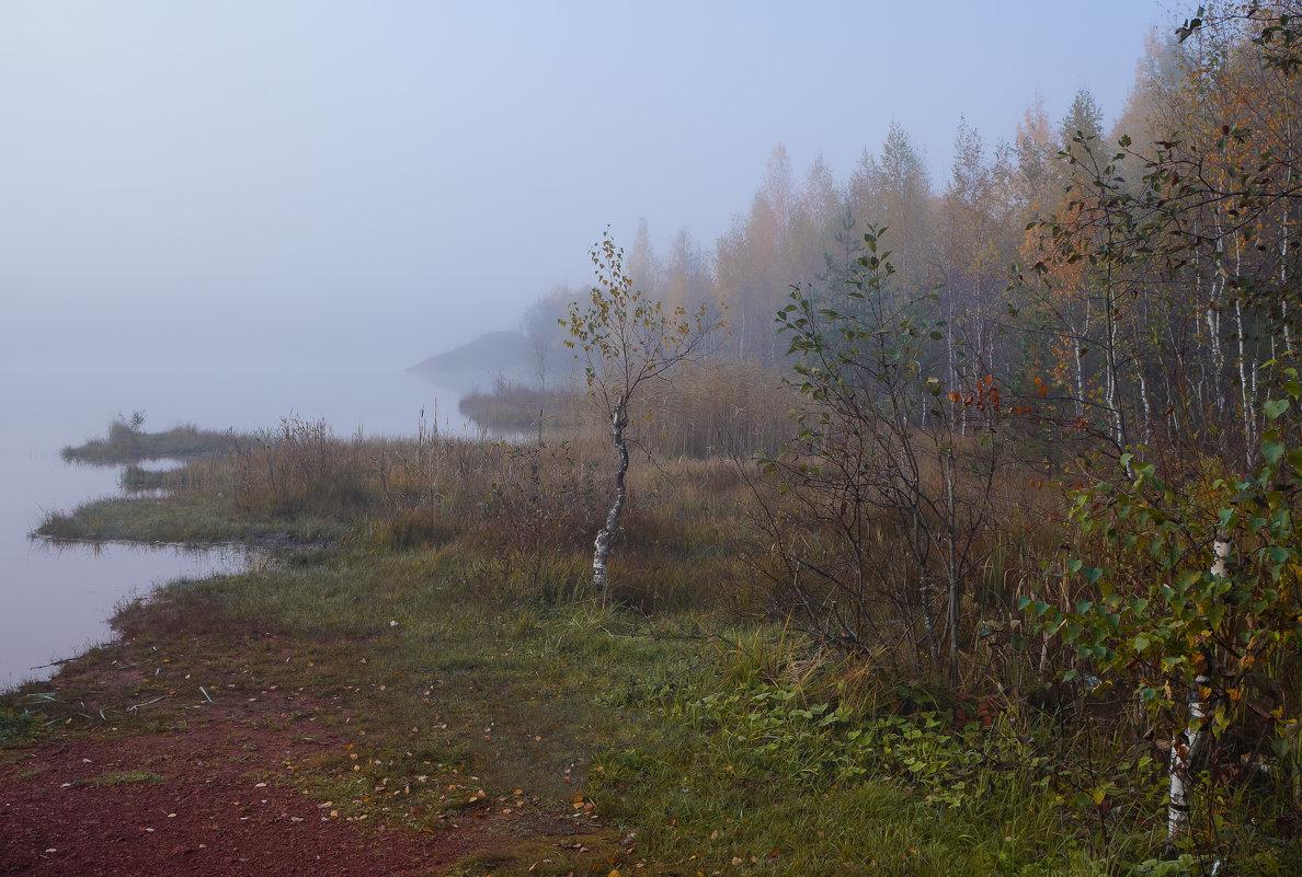 Утро туманное - Анатолий
