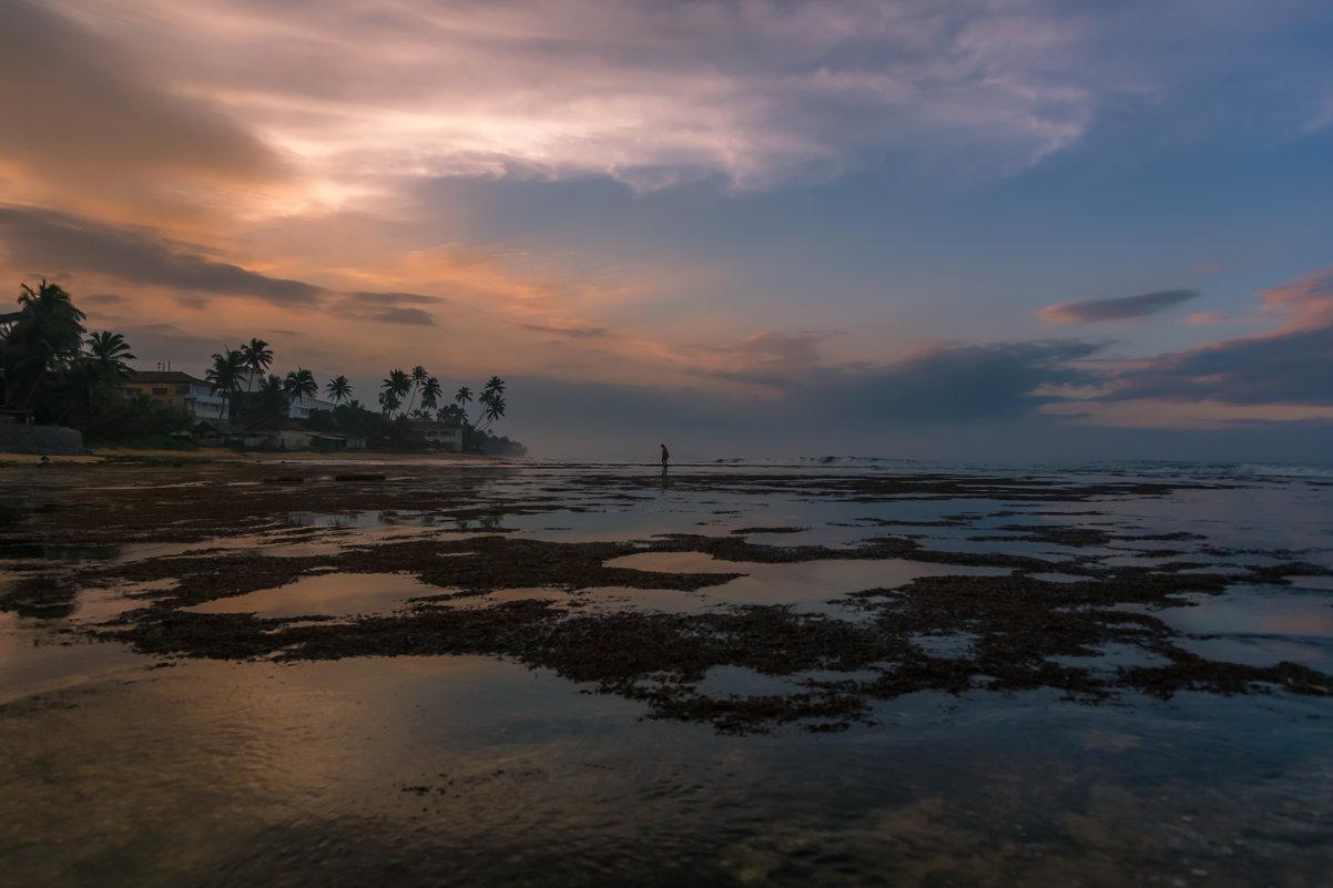 Индийский океан - Александр Коликов