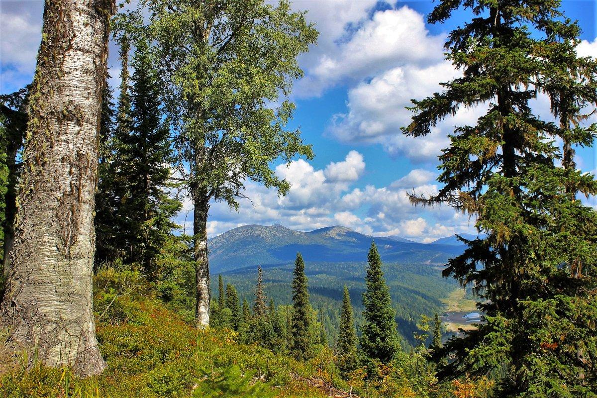 Взгляд в долину - Сергей Чиняев