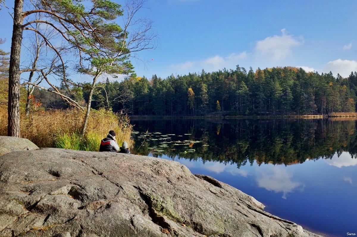 Осень в Tyresta - Swetlana V