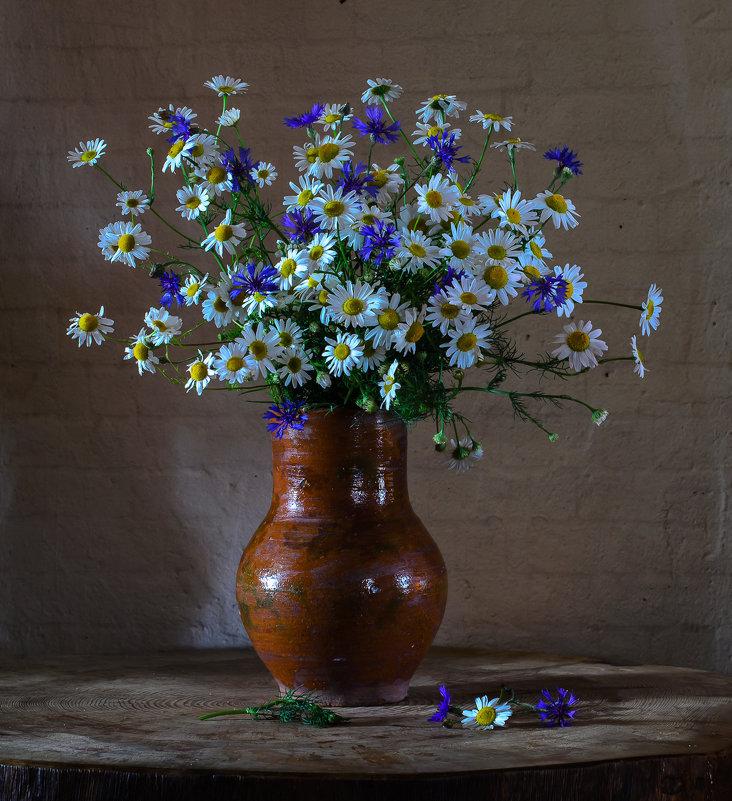 Ромашки с васильками - Вера