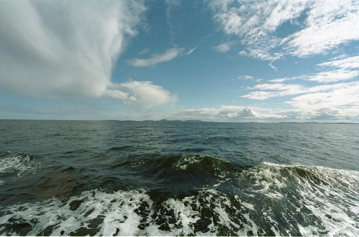 Белое море - Андрей