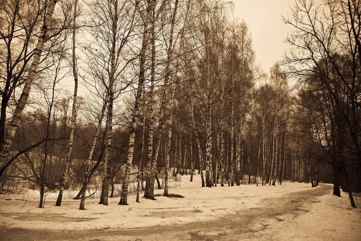 Март - Владимир Брагилевский