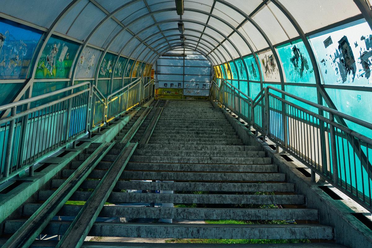 Лестница на мост - Света Кондрашова