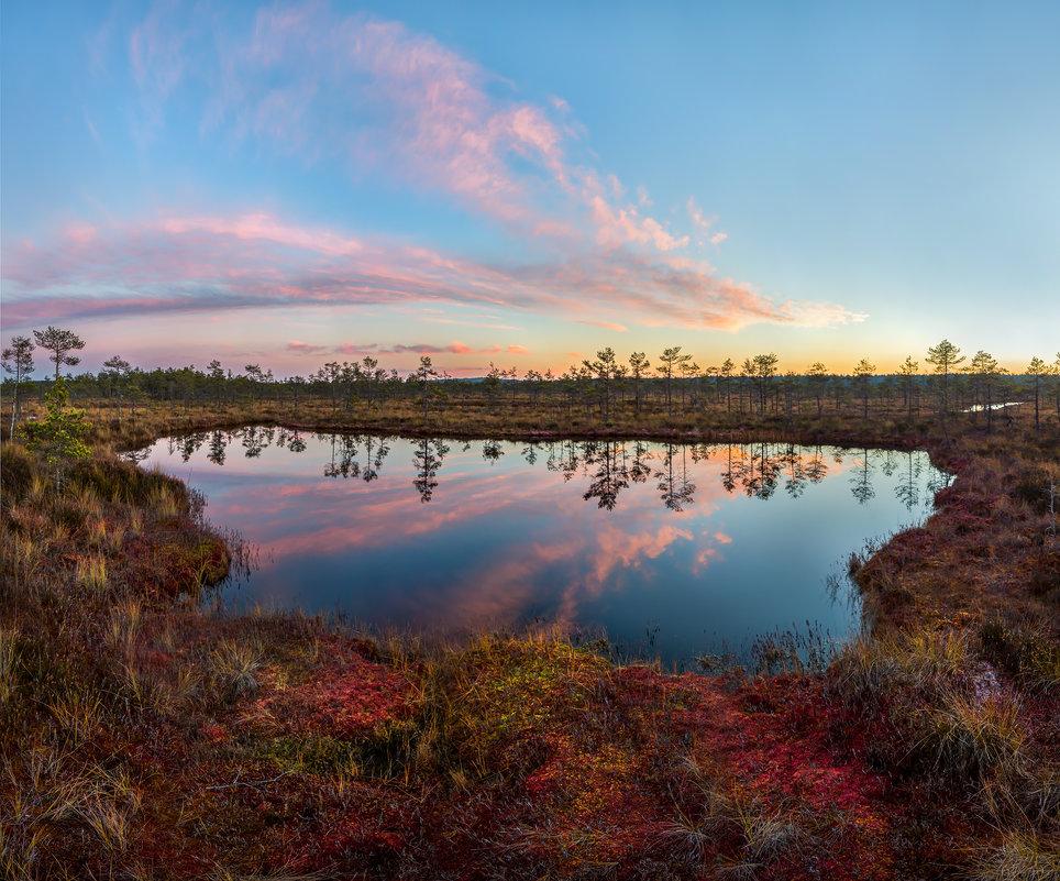 Осенние сумерки на болоте - Фёдор. Лашков